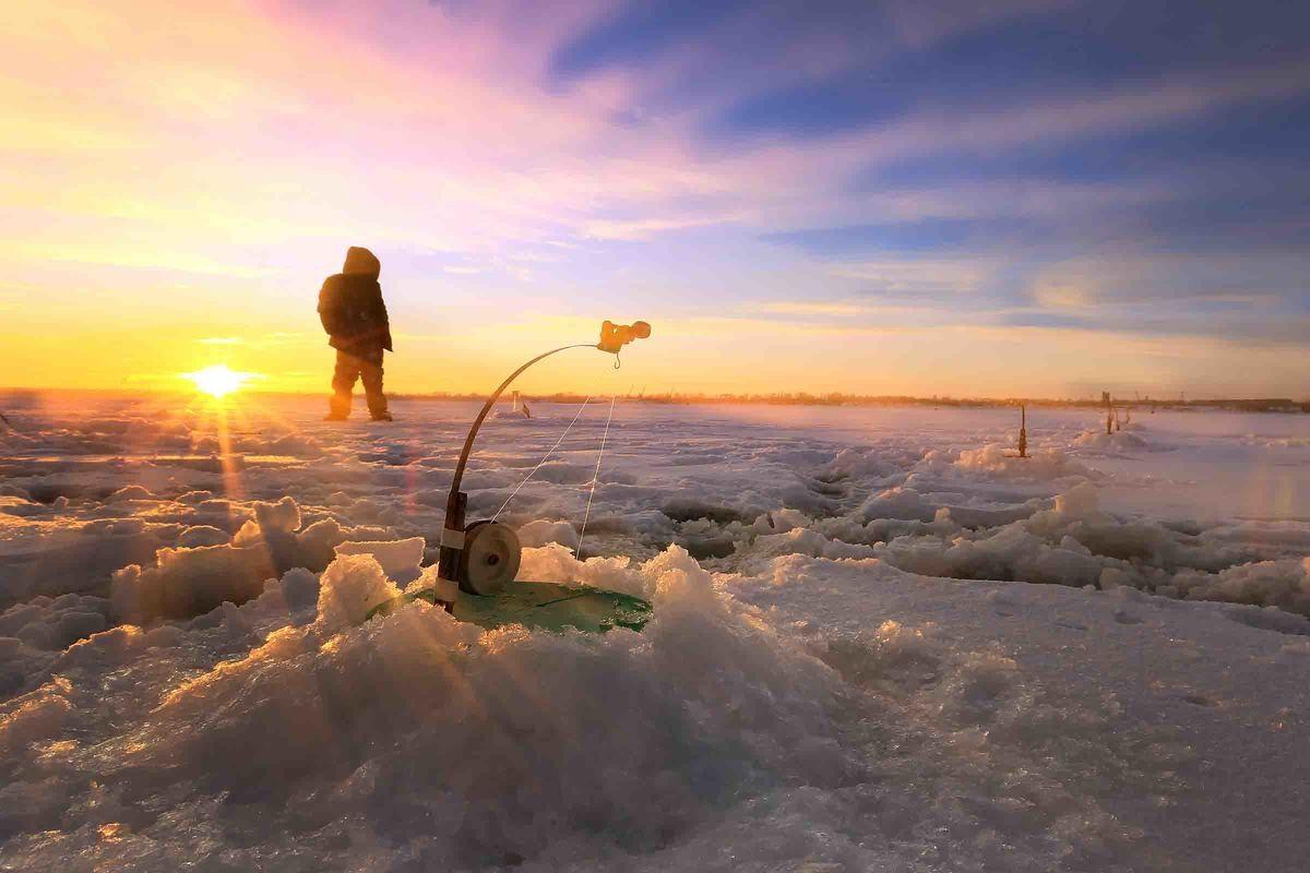 Pimpla - Fiske på Frusen Sjö